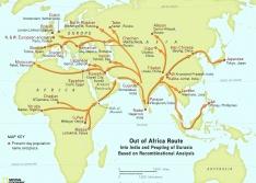 geno-project-human-migration-map_print